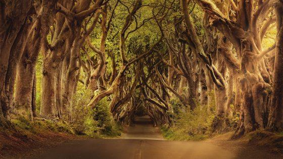 sitios-visitar-norte-irlanda